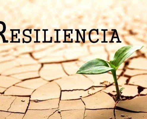 RESILIENCIA Y DERECHO OLMEDO Y VELASCO ABOGADOS